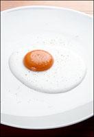 Wd50_egg