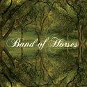 Bandofhorses_1